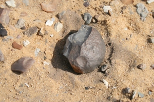 Neolithic agriculturalists worked stone and flakes in desert west of Fayum